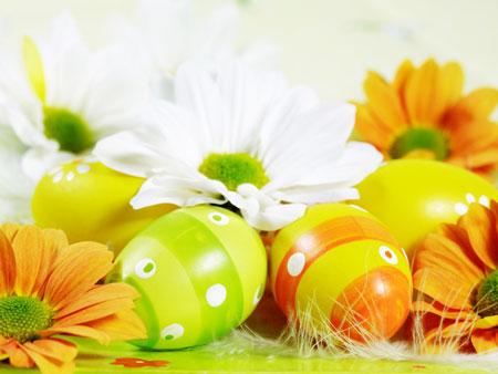 Obojana-Uskrsna-jaja-download-besplatne-pozadine-za-desktop-1024-x-768